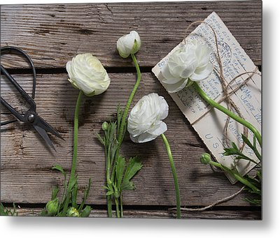 Metal Print featuring the photograph Love Is Everlasting by Kim Hojnacki
