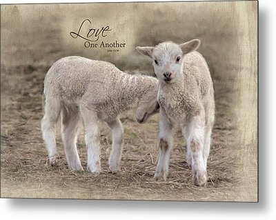Metal Print featuring the photograph Love One Another by Robin-Lee Vieira