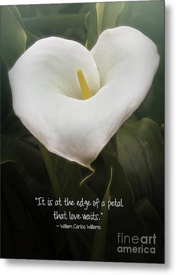 Metal Print featuring the photograph Love by Peggy Hughes