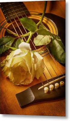 Love Song In The Making Metal Print