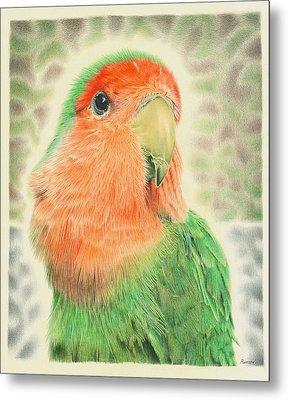 Lovebird Pilaf Metal Print