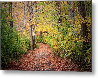 Lovely Autumn Metal Print by Mikki Cucuzzo