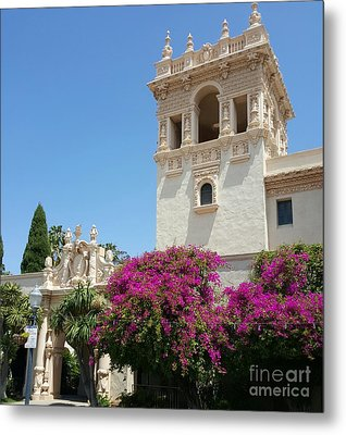 Lovely Blooming Day In Balboa Park San Diego Metal Print