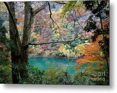 Lovely Landscape By Tim Wilson Metal Print