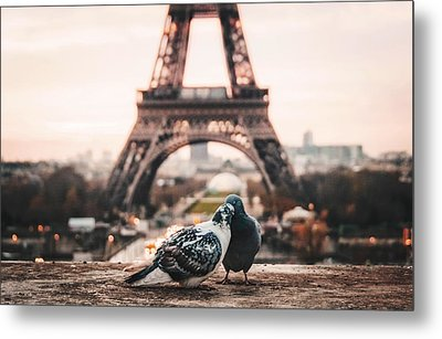 Lover Doves In Paris Metal Print