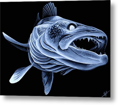 Low Light Walleye Metal Print
