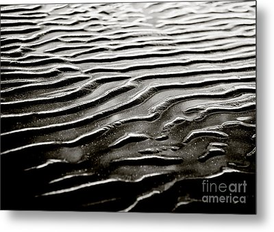 Low Tide  Metal Print by Charmian Vistaunet