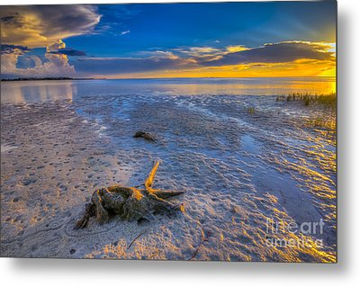 Low Tide Stump Metal Print by Marvin Spates