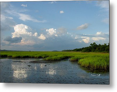 Low Tide Metal Print by Suzanne Gaff
