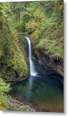 Lower Butte Creek Falls Plunging Into A Pool Metal Print by David Gn