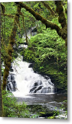 Lower Lunch Creek Falls Metal Print