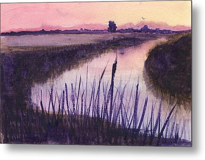 Loxahatchee Sunset Metal Print by Donna Walsh