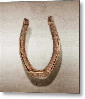 Lucky Horseshoe Metal Print by YoPedro