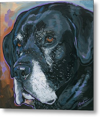 Lucy Metal Print by Nadi Spencer