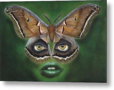 Luna Moth Metal Print by Wayne Pruse