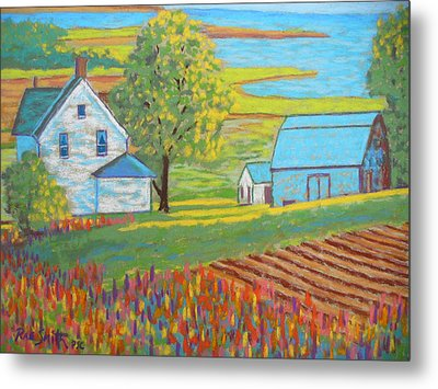 Lupens On P.e.i Metal Print by Rae  Smith
