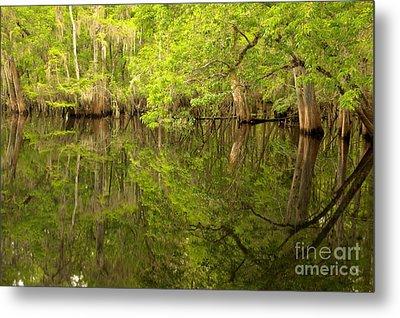 Lush Green Reflections At Manatee Springs Metal Print