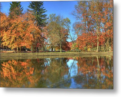 Metal Print featuring the photograph Lykens Glen Reflections by Lori Deiter