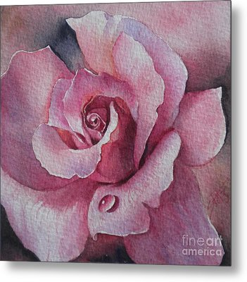 Lyndys Rose Metal Print by Sandra Phryce-Jones