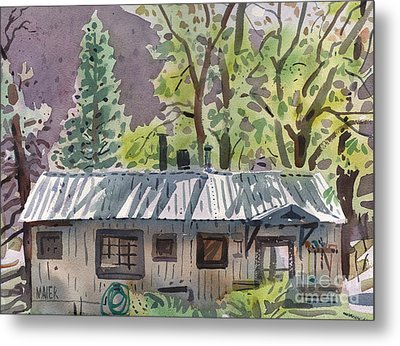 Lynne's Cabin Metal Print by Donald Maier