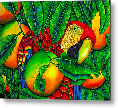 Macaw And Oranges - Exotic Bird Metal Print by Daniel Jean-Baptiste