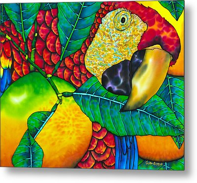Macaw Close Up - Exotic Bird Metal Print by Daniel Jean-Baptiste