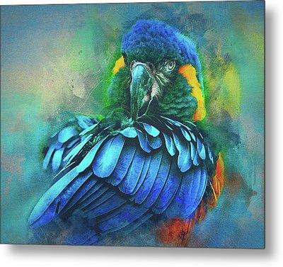 Macaw Magic Metal Print