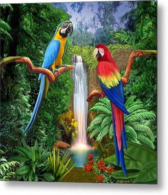 Macaw Tropical Parrots Metal Print by Glenn Holbrook