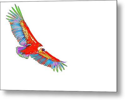 Macaw Vulture Metal Print
