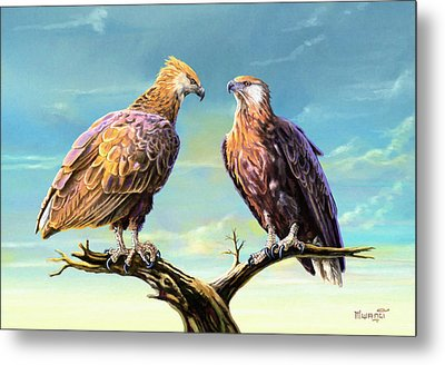 Madagascar Fish Eagle  Metal Print by Anthony Mwangi