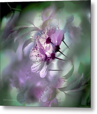 Metal Print featuring the photograph Madrid Flowers by Alfonso Garcia