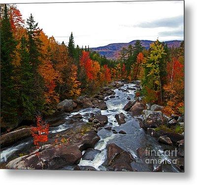 Magalloway River In Fall Metal Print