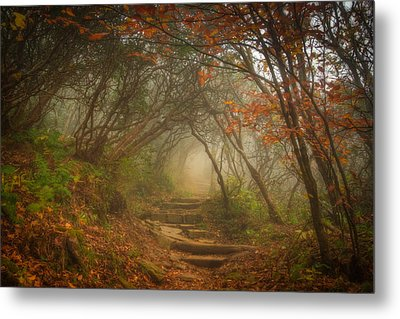 Metal Print featuring the photograph Magic Forest by Joye Ardyn Durham