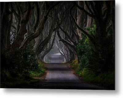 Magic Road Metal Print by Piotr Galus