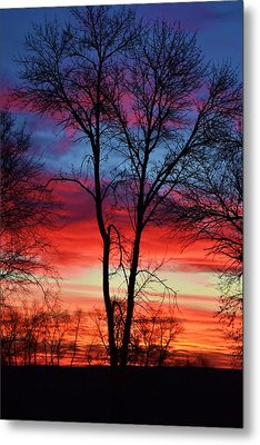 Magical Colors In The Sky Metal Print