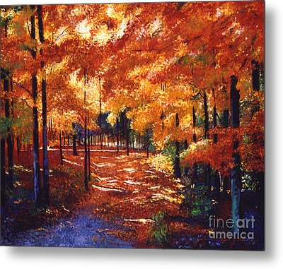 Magical Forest Metal Print by David Lloyd Glover