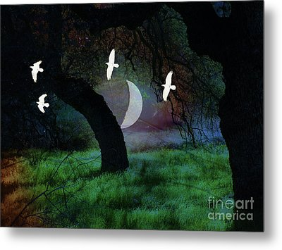 Magical Forest Night Metal Print by Robert Ball