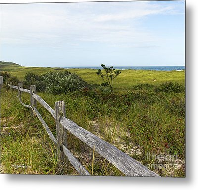 Metal Print featuring the photograph Magical Landscape by Michelle Wiarda