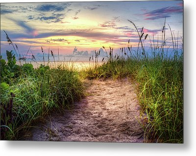 Metal Print featuring the photograph Magical Light In The Dunes by Debra and Dave Vanderlaan