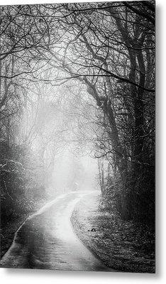 Magical Light Of Dawn Metal Print by Debra and Dave Vanderlaan