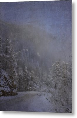 Metal Print featuring the photograph Magical Winter Day by Ellen Heaverlo