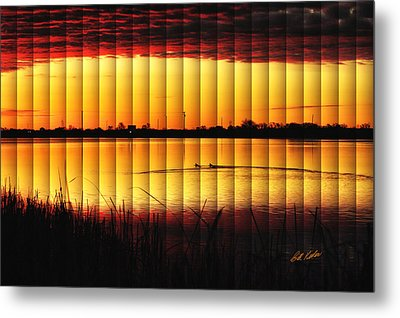 Magnificent Sunrise Swim Metal Print