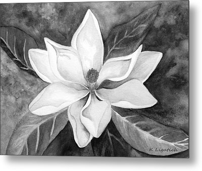 Magnolia In Black And White Metal Print by Kerri Ligatich