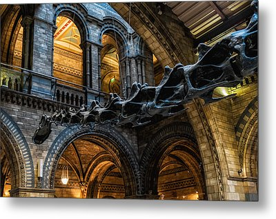 Main Man Metal Print by Glenn DiPaola