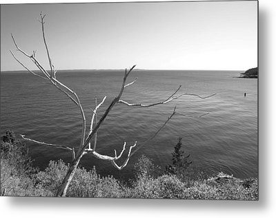 Metal Print featuring the photograph Maine Coastline by Corinne Rhode