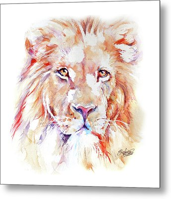 Majestic African Lion Metal Print by Stephie Butler