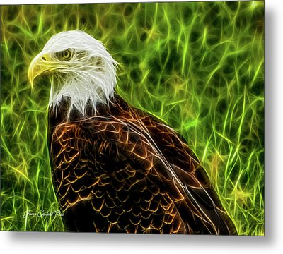 Majestic Eagle Metal Print by Joann Copeland-Paul