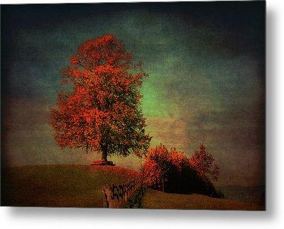 Majestic Linden Berry Tree Metal Print by Susanne Van Hulst