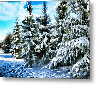 Majestic Winter In New England  Metal Print by Judy Palkimas
