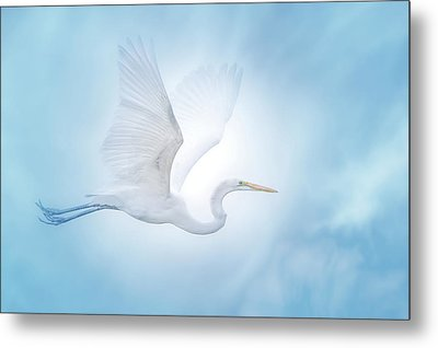 Majesty Of The Skies Metal Print by Mark Andrew Thomas